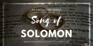 Song of Solomon (1:9-2:7): Marital Love God's Way
