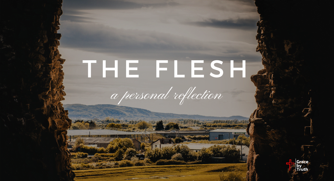 The Flesh - A Personal Reflection
